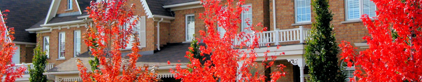 hip-consultant.co.uk contact page, houses with red blossom trees