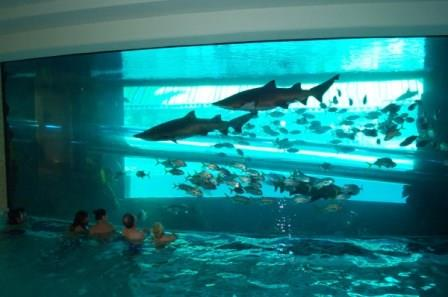 The 5 most outrageous swimming pools in the world for Las vegas swimming pools open to public
